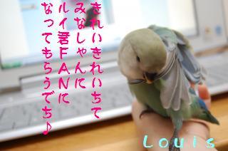 DSC_5582_convert_20090511104455.jpg