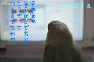 DSC_5796_convert_20090511110007.jpg