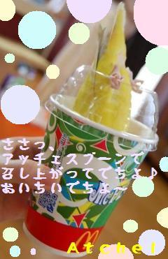 atchelhuruuri_convert_20090510222149.jpg