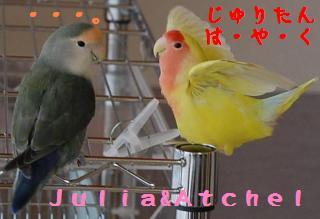 atchelsasouonnna_convert_20090510170704.jpg