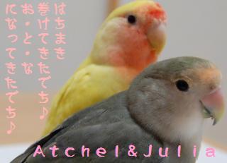 jaodeco_convert_20090511213546.jpg