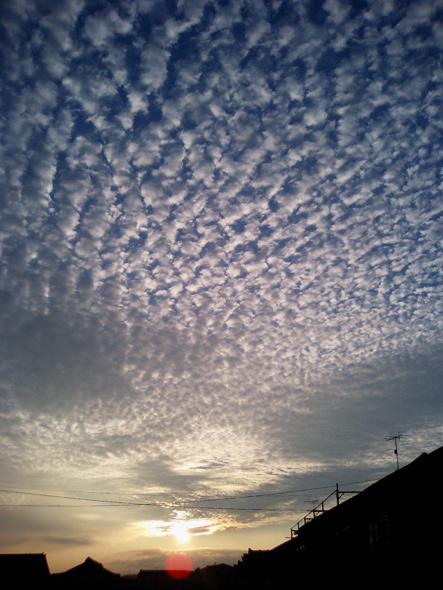 ひつじ雲。