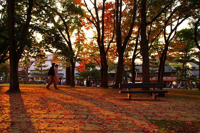 秋色の恋人たち。