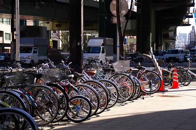 自転車たち。