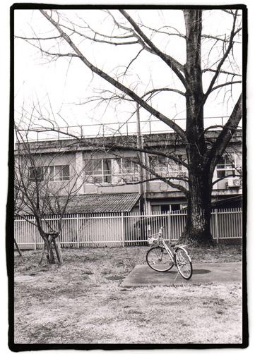 図書館と自転車。
