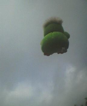 空飛ぶ超熱狂的西武ファンさん