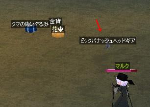 060411_2.jpg