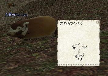 060429_2.jpg