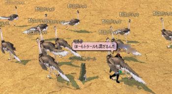 060505_5.jpg