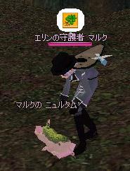 060506_5.jpg