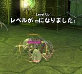1204_tora2.jpg