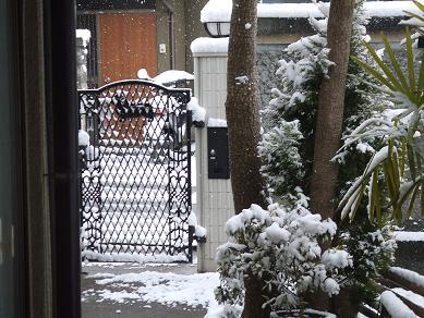 2/24雪
