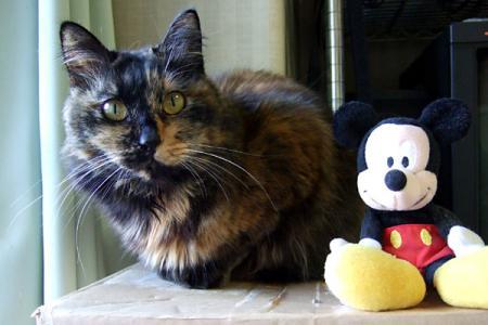 今年はマウス年