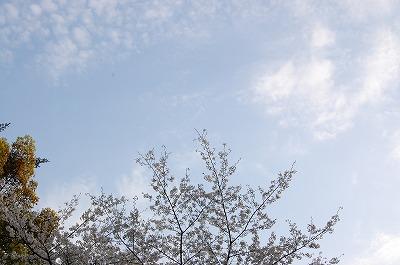 blog_DSC_0566.jpg