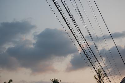 blog_DSC_2264.jpg