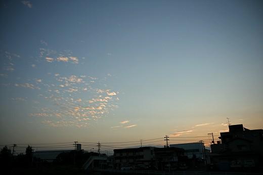 a_IMG_2036.jpg