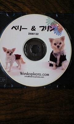 081015伊豆旅行プロ写真CD中身