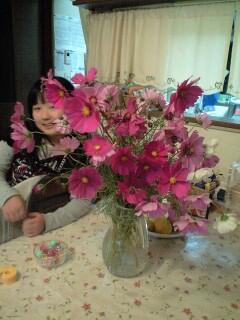 081018花瓶のコスモスと実織