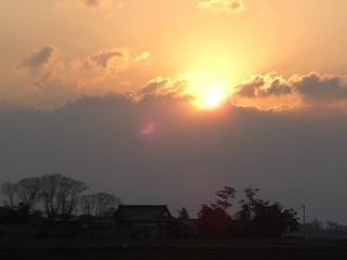 ふきのとうブログ日の出、ひばり、猫柳 002