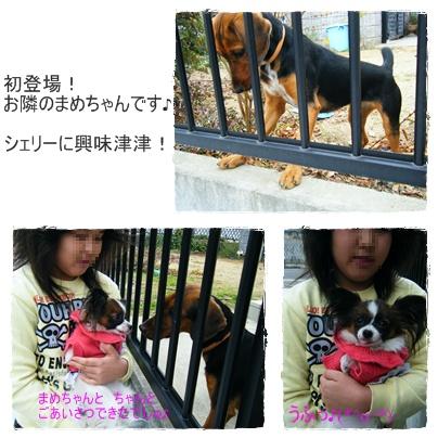 D-0068_20091210122228.jpg