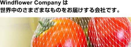 Windflower Companyは世界中のさまざまなものをお届けする会社です。