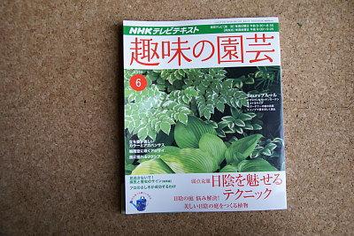 0520-5趣味の園芸