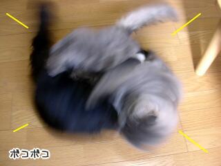 20051214-2.jpg