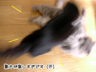 20051214-3.jpg