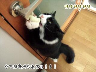 20060329-5.jpg