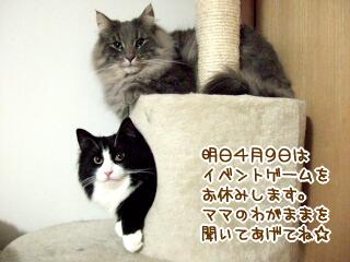 20060408-1.jpg