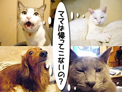01_導入画像