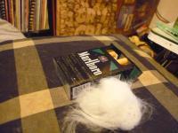 ぶーちゃんの毛