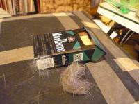 マニーの毛
