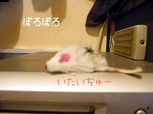 しろネズミ