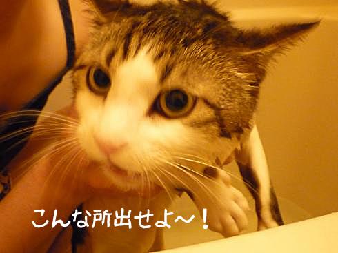お風呂前2
