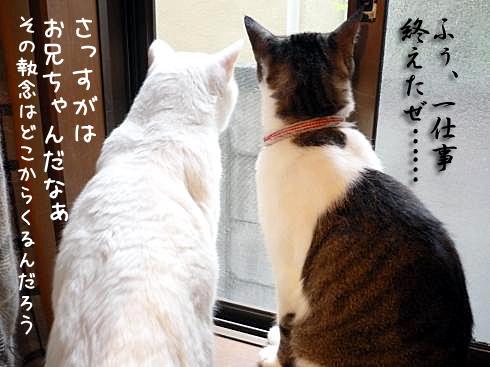 窓開け後1