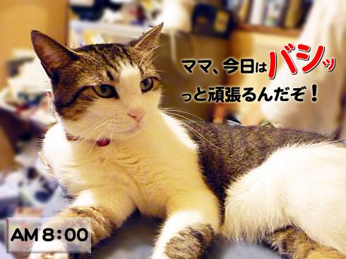 01_マニー激励