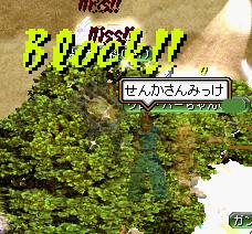 20051202192703.jpg