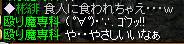20051226194359.jpg