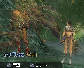 kouya005.jpg