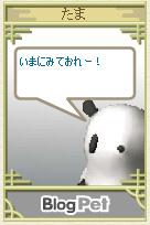 snap-0067.jpg