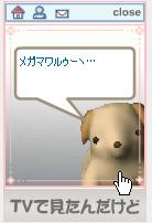 snap-0098.jpg