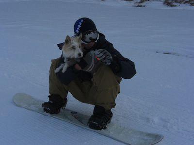 ボード犬3