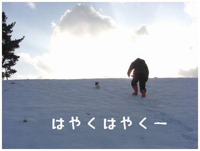 2008_01090082.jpg