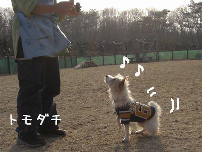 2008_03110185.jpg