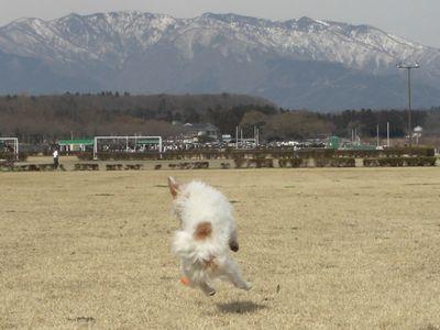 2008_032310101.jpg