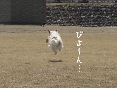 2008_03250079.jpg