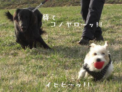 2008_04020313.jpg