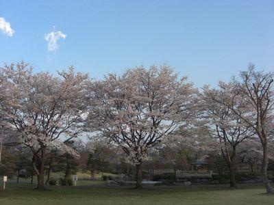 2008_04150377.jpg