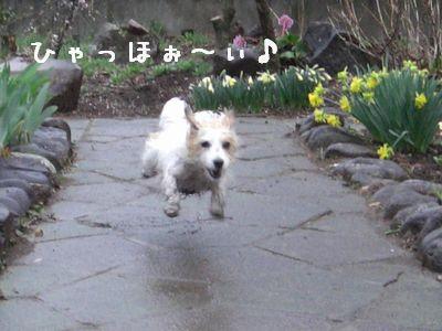 2008_04190003.jpg